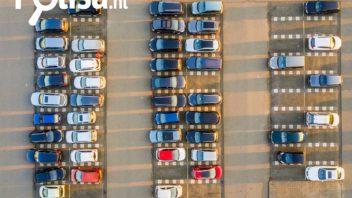 Ar privaloma perregistruoti automobilį Olandijoje?